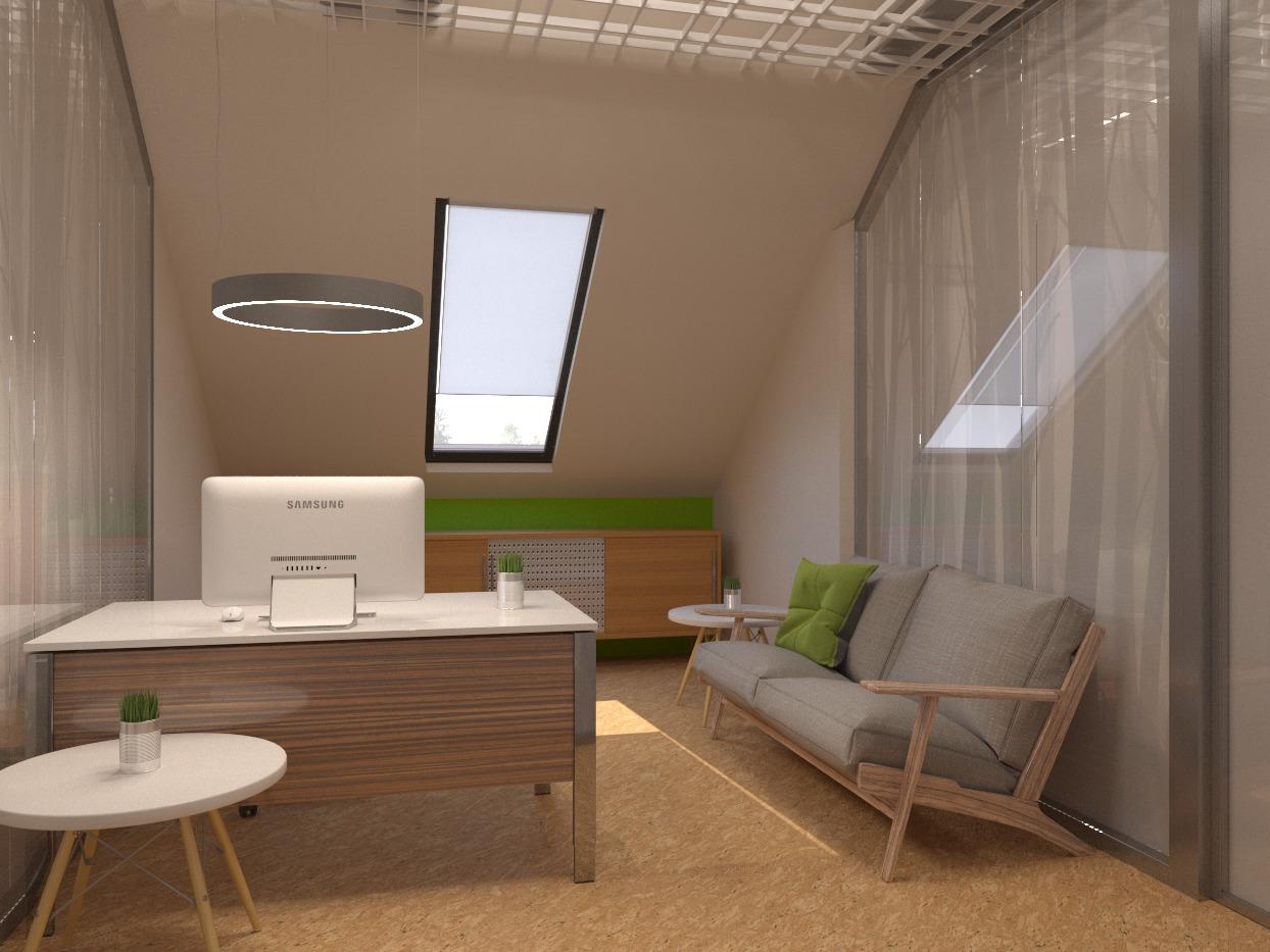 кабинет в эко-офисе, офис в эко стиле
